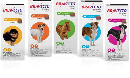 From what age a Bravecto pill can be given?