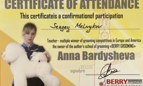 Participation - Master class in Israel from Anna Bardysheva