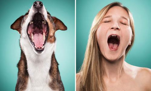 Photo of dog owners who repeat their facial expressions for their pets